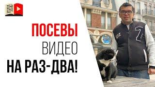 Посев видео в социальных сетях   Совет начинающим видеоблогерам №10 от Александра Некрашевича