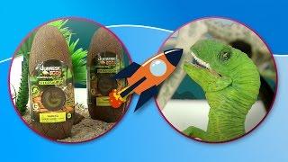 Динозавры. Велоцираптор и Стиракозавр играют с яйцами Юрский период