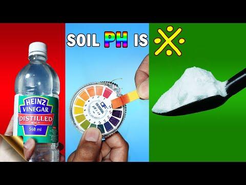 GARDEN SOIL PH TESTING – 3 EASY METHODS   BAKING SODA VINEGAR HACK OR LITMUS TEST