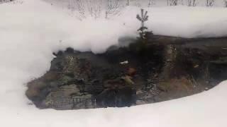 Фекальный потоп в Советском. 436-я серия.