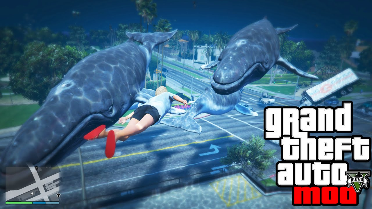 Image result for grand theft whale mod