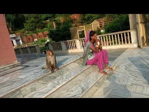 Haryana Ferozepur Jhirka Mahadev Mandir