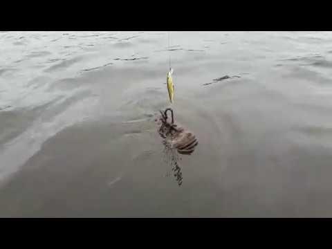 Отддых. рыбалка. пено