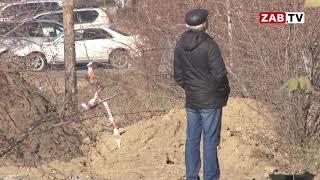 Вырубку яблонь возле бывшего машзавода разрешила администрация Читы