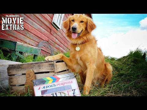 Go Behind the Scenes of A Dog's Purpose (2017)