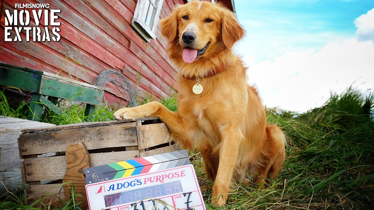 How To Watch Dogs Purpose For Free