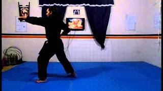 Pinan Sandan - Kenyu Ryu