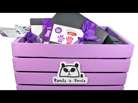 Panda-a-Panda Surprise Box Unboxing Toy Review Blind Box Plush, Vinyl Figures and MORE!