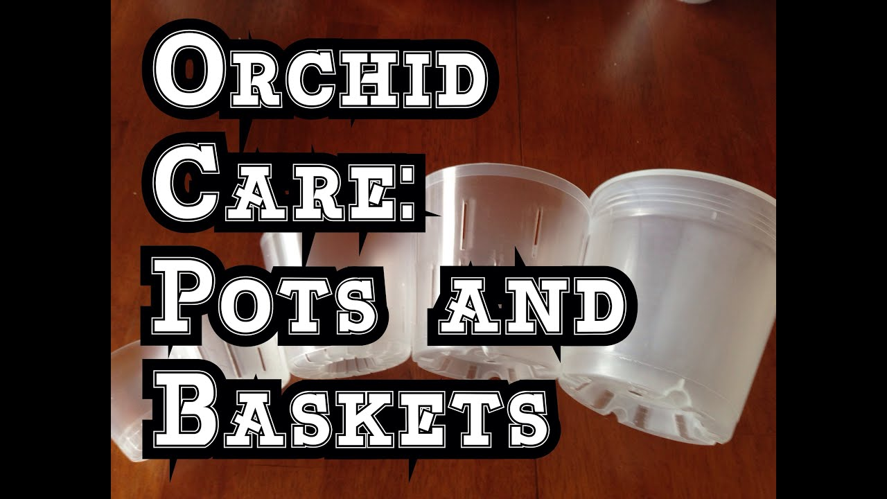 Orchid Care How I Make Hanging Pots For Orchids And