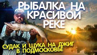 Рыбалка на красивой реке в Подмосковье 2021. Щука и судак на спиннинг.