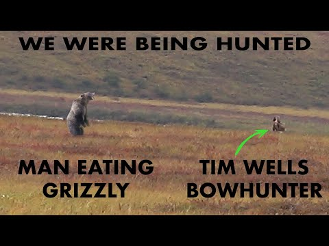 Grizzly Bear CHARGE and LONG RANGE CARIBOU KILL! | Bowmar Bowhunting |