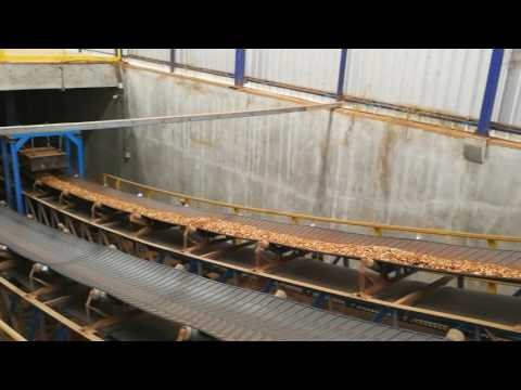 Wood Chip Belt Conveyor