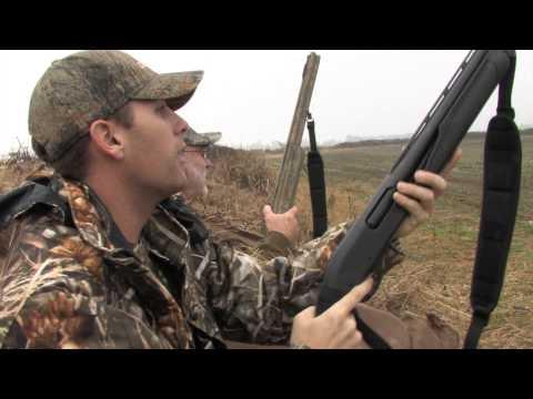 Specklebelly Goose Hunting on the Arkansas Grand Prairie