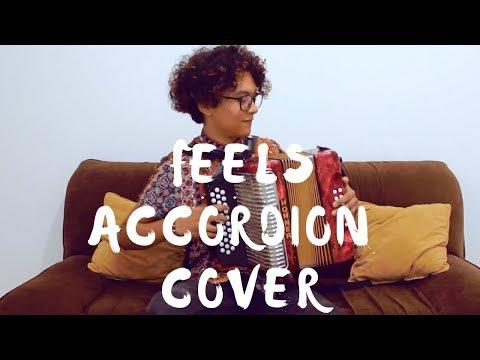 Feels - Calvin Harris ft Pharrell Williams Katy Perry Big Sean Mulett Accordion Cover