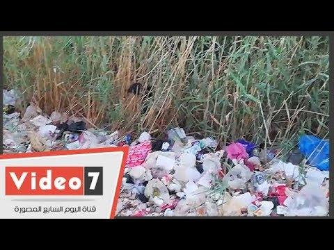 اليوم السابع :القمامة تغطى مصرف موط الزراعى وغابات الحشائش تتحول لبؤرة تجذب الحشرات