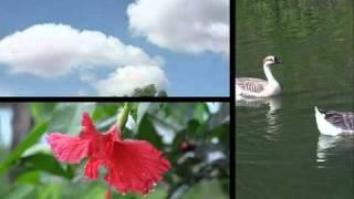 YouTube   OLDEST Bangla Folk Song  Rangpur Region  Bangladesh   5