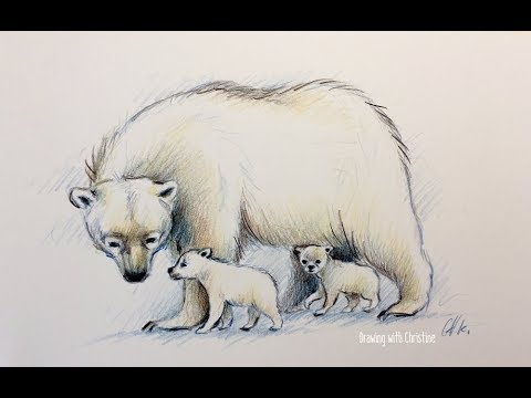 Colored Pencil Drawing Sketch Demo Polar Bear With Cubs