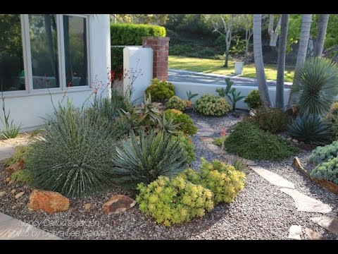 Design Ideas From An Award Winning Succulent Garden Youtube