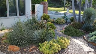 Video Design Ideas from an Award-Winning Succulent Garden download MP3, 3GP, MP4, WEBM, AVI, FLV Juni 2018