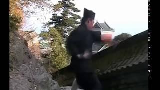 Explosive Wudang Kungfu - Internal Powers - Fali u0026 Fajin 武当发劲和发力