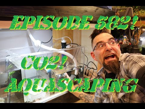 Episode 582! Setting up Co2 in your Aquascape!