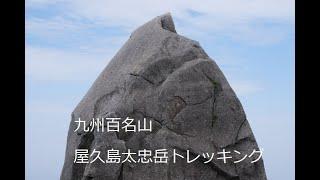 【屋久島太忠岳トレッキング動画】~屋久杉と自然の造形美に驚かされるコースは九州百名山!