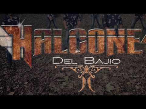 Halcones Del Bajio