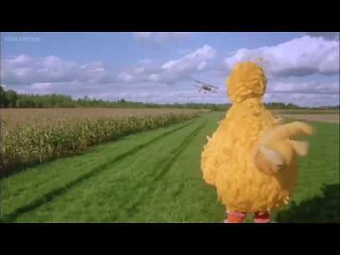 Sesame Street Follow That Bird Is That Miss Finch?