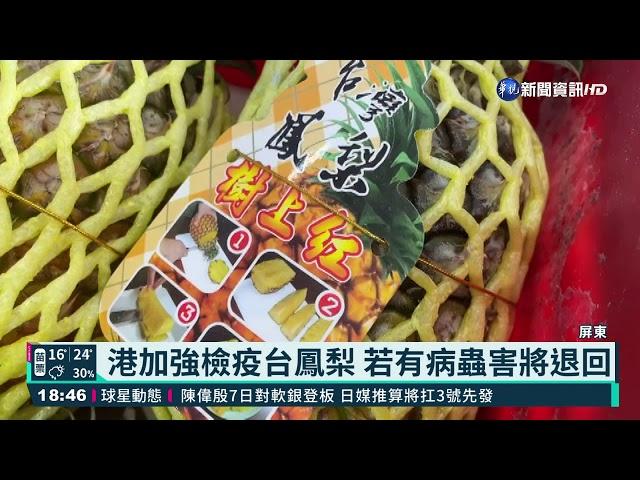 不懼中打壓! 30噸屏東鳳梨封櫃銷香港|華視新聞 20210305