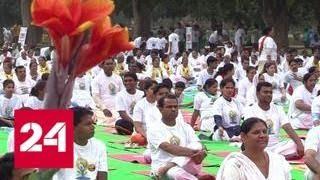 Индия отметила День йоги массовым исполнением асан - Россия 24