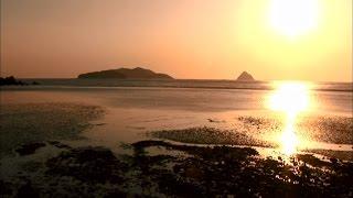 [Alive island 1] 섬은 살아있다 2부 풀등(2012년작)