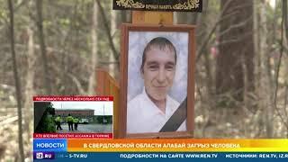 Алабай загрыз человека в Свердловской области