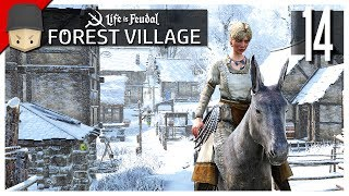Life is Feudal Forest Village - Ep.14 : DONKEYS!