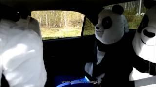 Автомобильный чехол Панда(Если вы не знаете какой подарок выбрать на День рождения или на новый год, а нужен именно уникальный, неподр..., 2013-11-10T16:22:40.000Z)