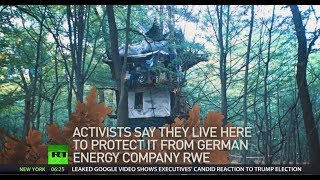 Lost fight: German environmental activists removed from tree house camp