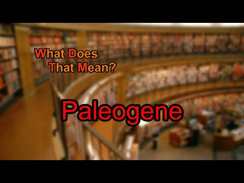 What does Paleogene mean?