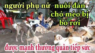 """""""người phụ nữ nuôi hàng trăm chó mèo hoang bị bỏ rơi """" được MTQ tiếp sức"""