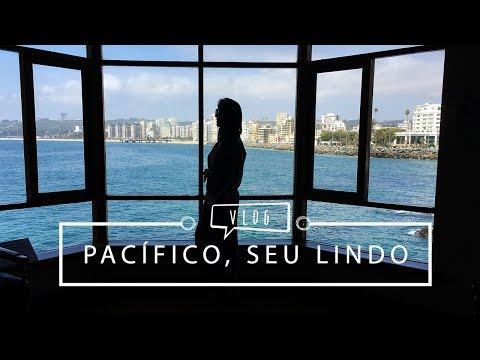 Vlog: Vinícola, Valparaiso, Viña del Mar e Seguidores   La Vida
