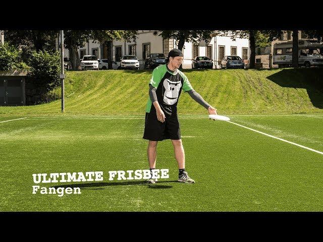 GORILLA Frisbee - Fangen (5)