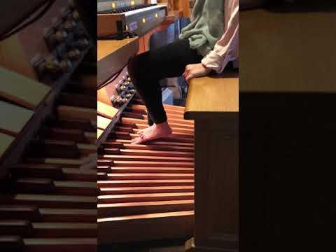 Organ Shoes – Pipes Keys and Chords