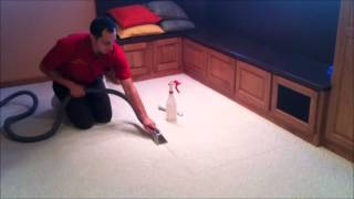 How Referral Removes Sticky Tape Residue From Carpet In Fort Wayne