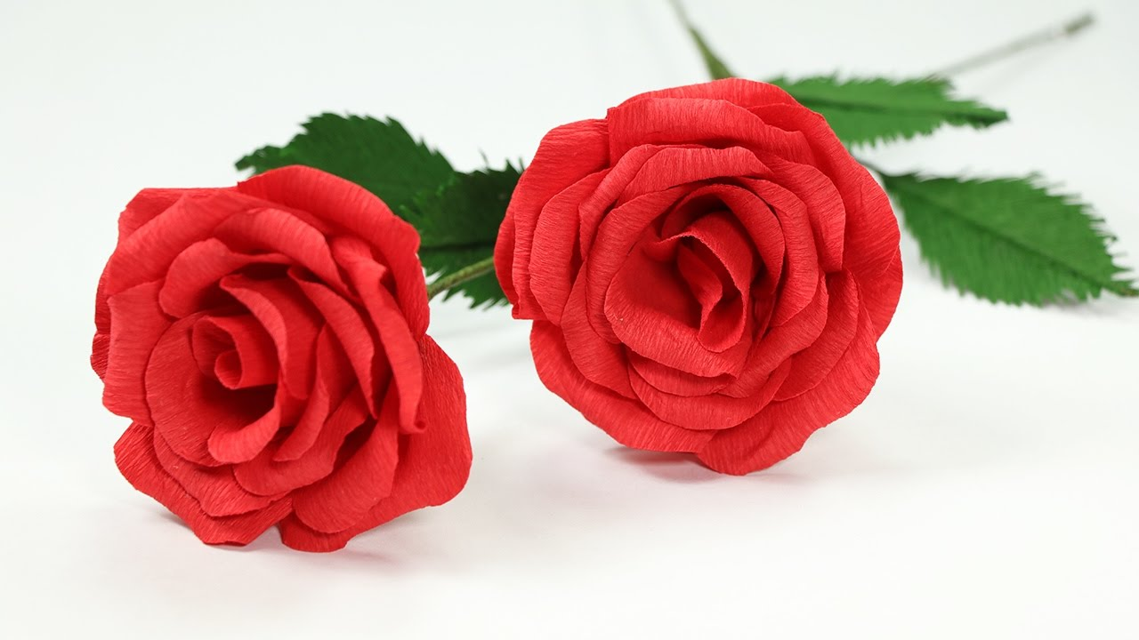 Types of small red roses best flowers and rose 2018 for How much did it cost to build mount vernon