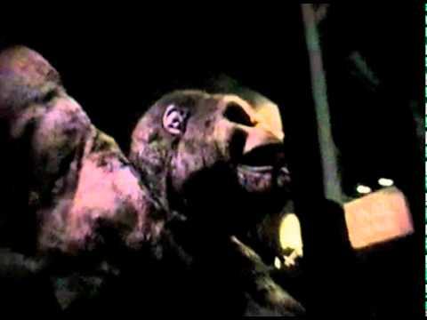 Kongfrontation breaks down - YouTube
