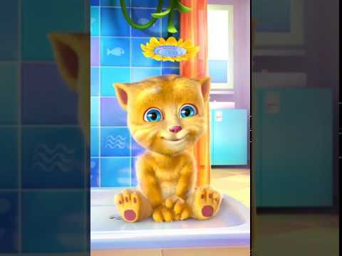 Ginger Cat Sings DREIDEL, DREIDEL, DREIDEL with Lyrics - Hanukkah Children's Song