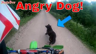 CZ 250 | First Ride After Engine Upgrades | Angry Dog Attack