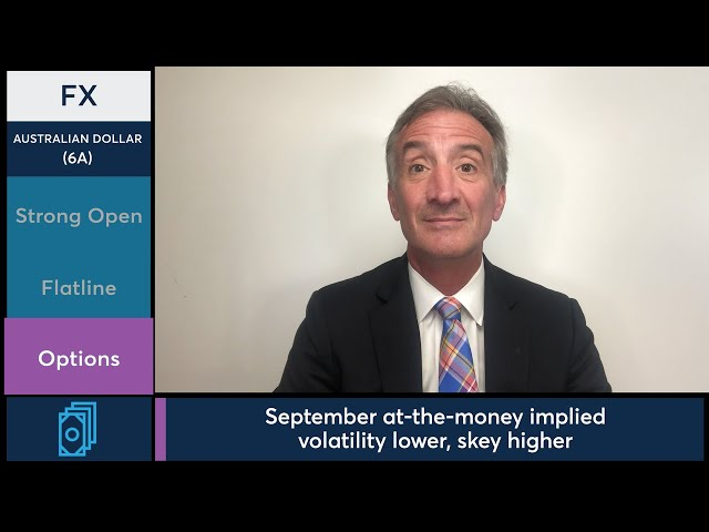 July 29 FX Commentary: Larry Shover