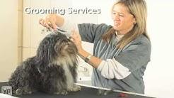Pet Spa | Doral, FL | Kennels | Pet Grooming & Massage