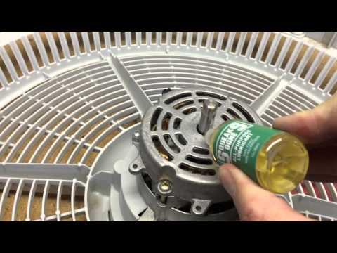 Squeaksgone Fan Repair You