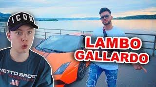 ☀️ApoRed - Lambo Gallardo (Official Video) REACTION/ANALYSE