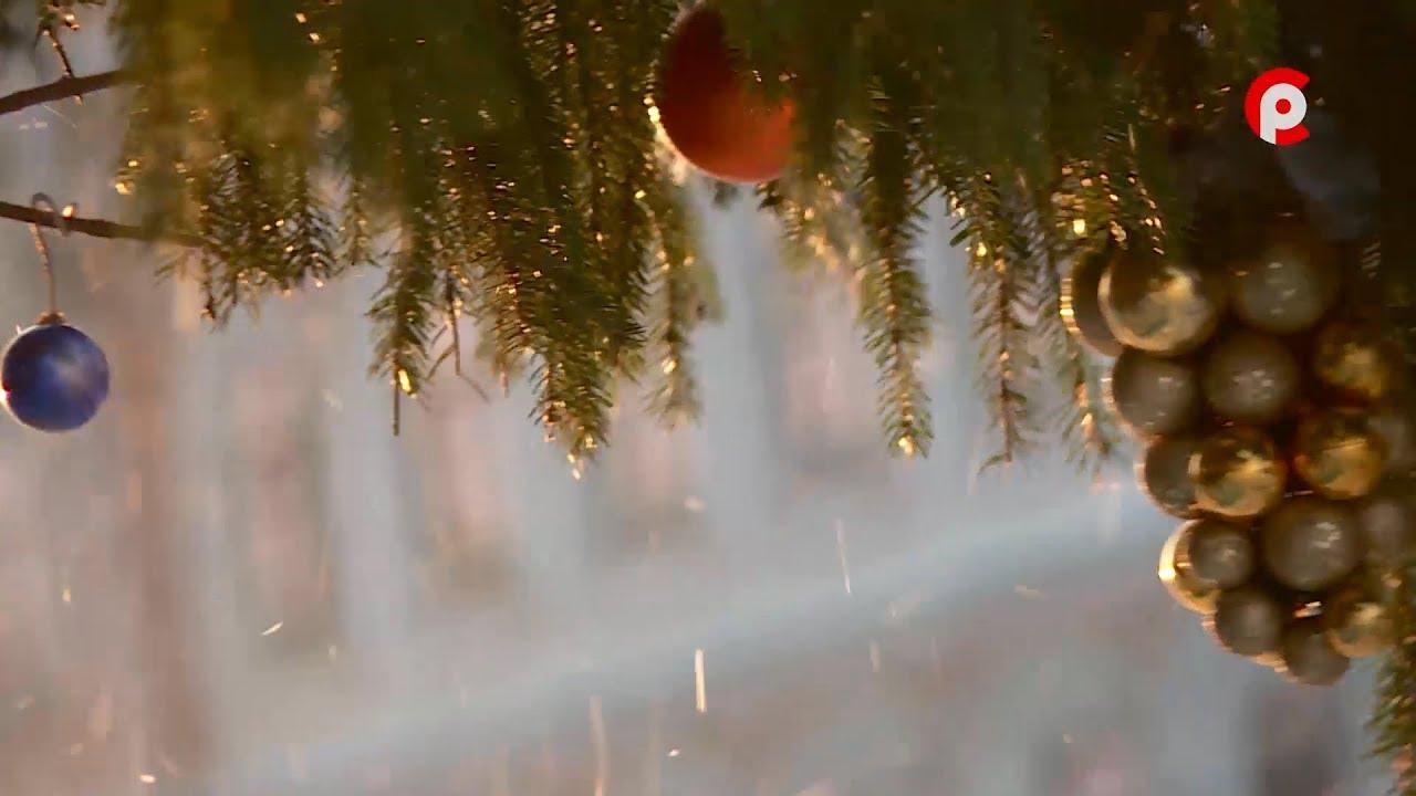 Программа Новогодних Мероприятий в Вологде программа развлекательного мероприятия